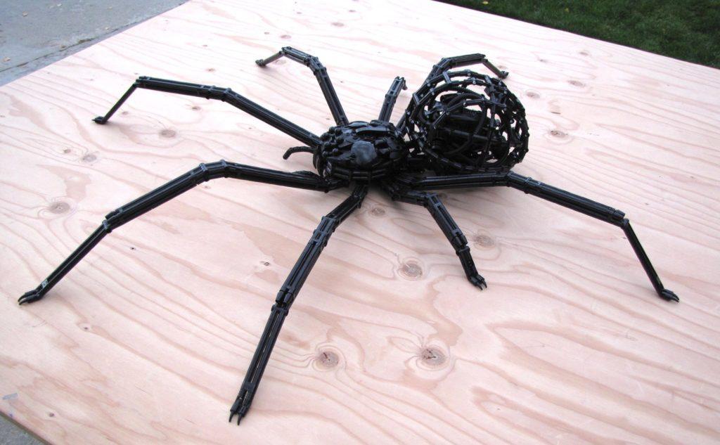 Black Widow Spider by Jarrod Suarez