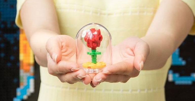 001---flower