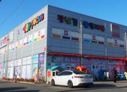 Toy Focus South Korea