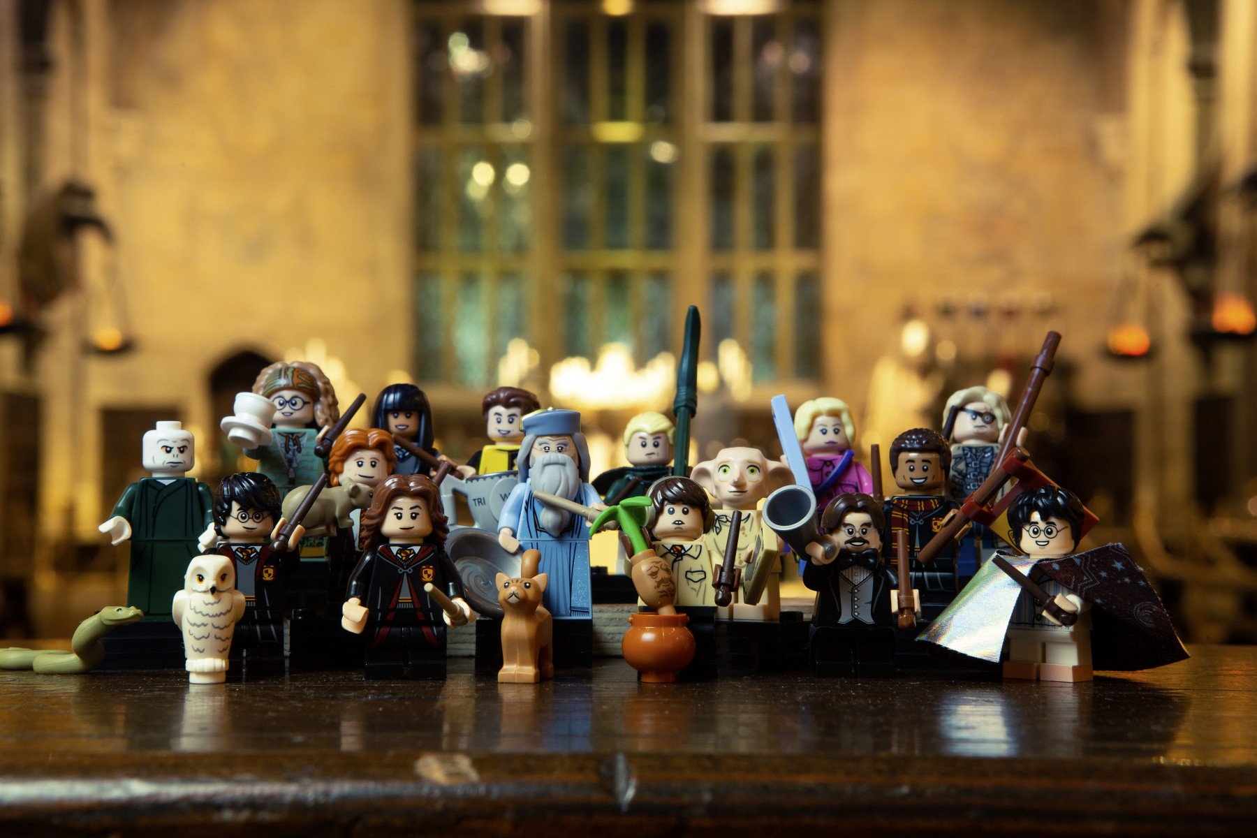 LEGO_WWHP_harry potter cmf 71022 07