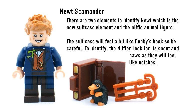 017---Newt-Scamander