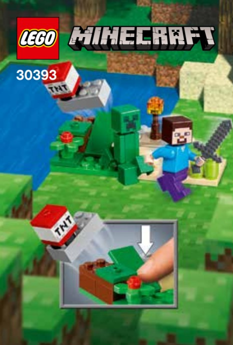 30393- Steve and Creeper Set